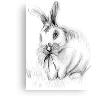 White Rabbit Canvas Print