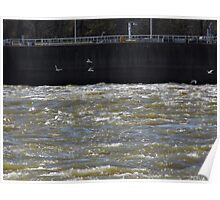 Sea Gulls On The River Poster