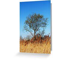 Springtime tree Greeting Card