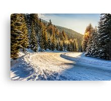 snowy road through spruce forest in mountains Canvas Print