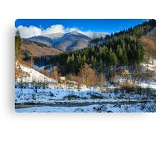 coniferous forest on the snowy mountain peaks Canvas Print