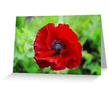 We will remember them Greeting Card