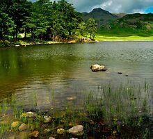 Peaceful Retreat by paula smith