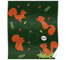 Feisty Squirrels Food Fight Poster