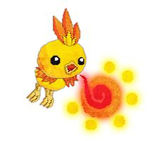 shiny torchic by cavia