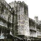 Caernarvon Castle by Neill Parker