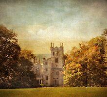 Lyndhurst Estate by Jessica Jenney