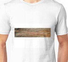 Mount Borradaile Rainbow Serpent Unisex T-Shirt