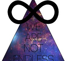 We Are Not Endless by coczero