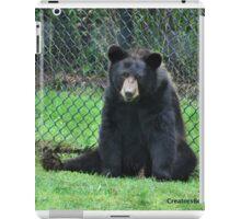 Yogi Bear iPad Case/Skin