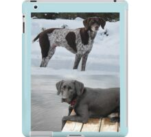 Canadian family dogs iPad Case/Skin