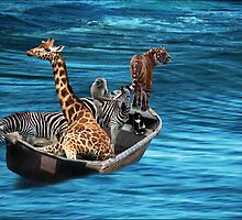 adrift by carol brandt