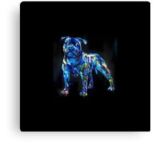 dog in the dark Canvas Print