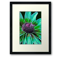Flower with Bumble from Planet Zorg  Framed Print