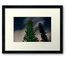 Trees at Night Framed Print