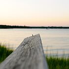 dock over quogue sunset by Jacki Campany