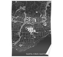 Santa Cruz Eastside, wireframe Poster