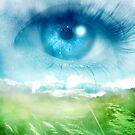 Ocean Eye by Stephanie Rachel Seely