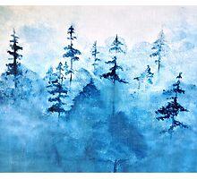 Blue Woods Duvet Photographic Print