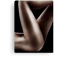 Sexy nude woman legs on black art photo print Canvas Print
