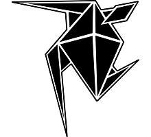Freestyle Black Diamond Design Photographic Print