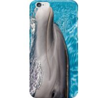 The Dolphin Perspective #2 iPhone Case/Skin