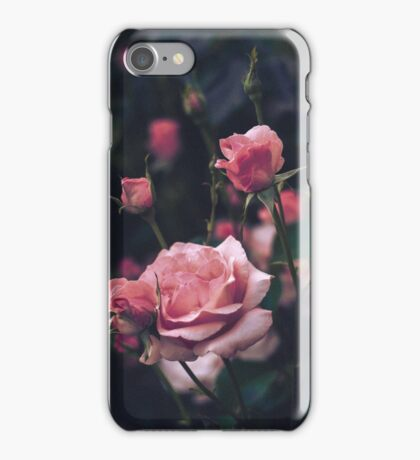 Roses ii iPhone Case/Skin