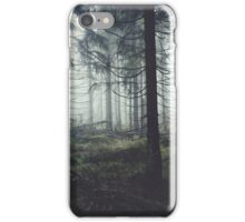 Through The Trees iPhone Case/Skin