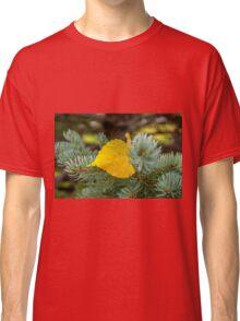 Autumn Poplar Leaf Classic T-Shirt