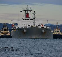 CORONA  EMBLEM - BULK CARRIER by Phil Woodman