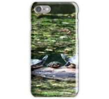 Turtle family portrait iPhone Case/Skin