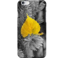 Autumn Poplar Leaf In Black and White Perspective #2 iPhone Case/Skin