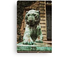 Princeton Tiger 3 Canvas Print