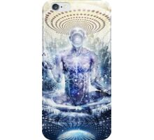 Awake Could Be So Beautiful, 2011 iPhone Case/Skin