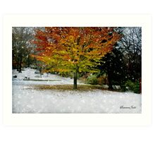 Beech Tree~ Caught in a Snow Flurry Art Print