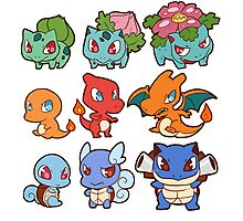 Kanto Poke Chibi Party Photographic Print