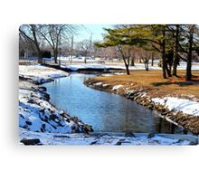 Tranquility in V S Canvas Print