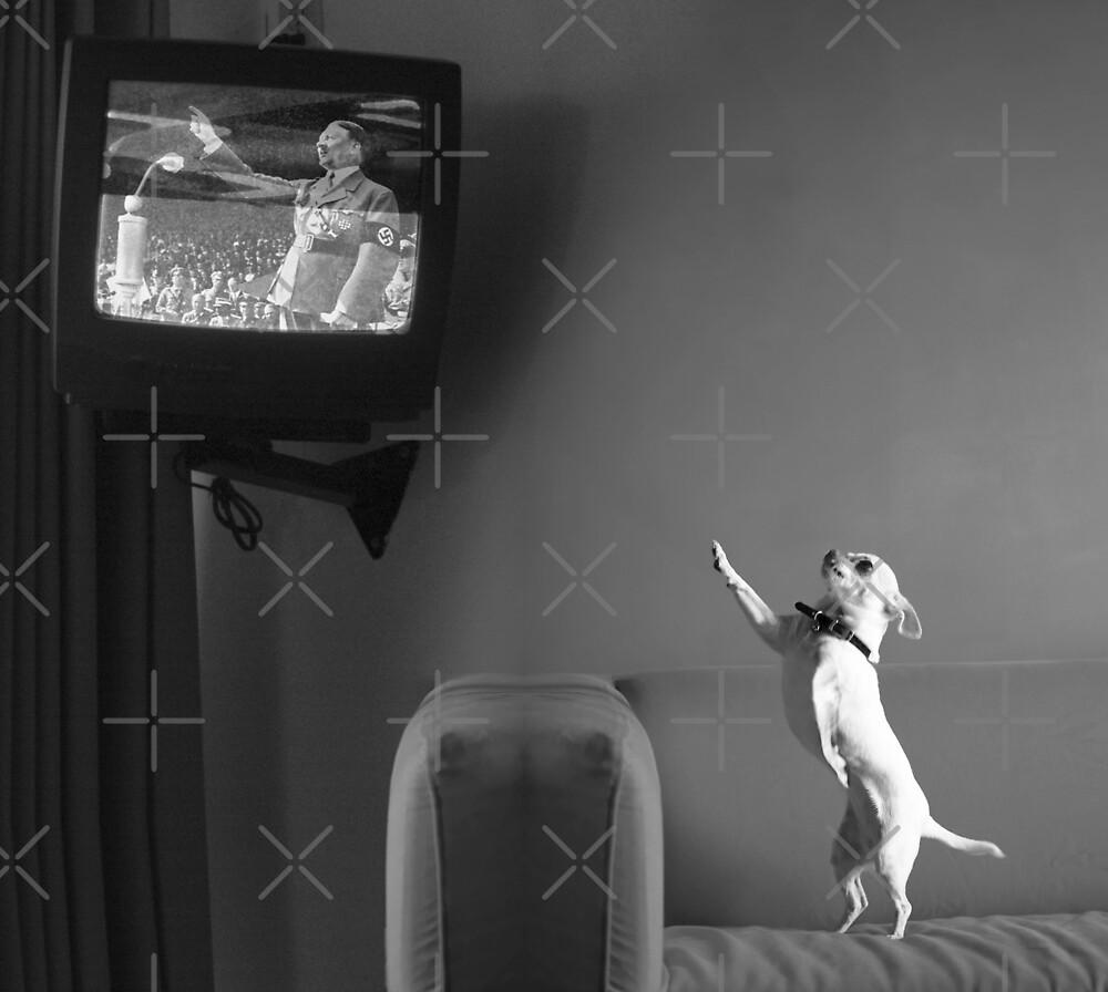 Mutzy Watching Triumph Of The Will  by Alex Preiss