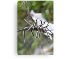 Barbed. Canvas Print
