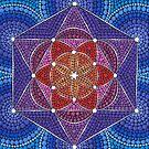 Genesis Pattern by Elspeth McLean