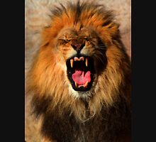 hear me roar Hoodie