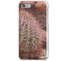 Wild Desert Cactus iPhone Case/Skin