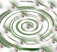 Spinning Flowers by Susan Werby