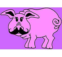 Hipster Pig Photographic Print