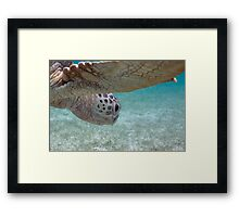 World Below Framed Print