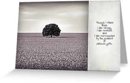 though I stand alone by scottimages