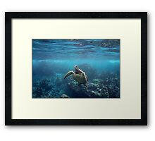After a Long Sleep Framed Print