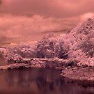IR - Burrator Reservoir, Dartmoor by Neil Bygrave (NATURELENS)