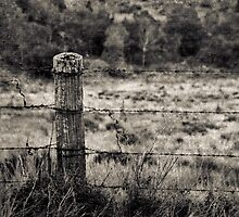 I alone shall carry your burden by scottimages