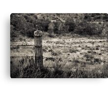 I alone shall carry your burden Canvas Print